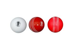 5 Best cricket balls in India 2021